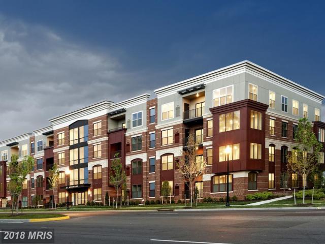 3989 Norton Place #208, Fairfax, VA 22030 (#FC10286663) :: Bob Lucido Team of Keller Williams Integrity
