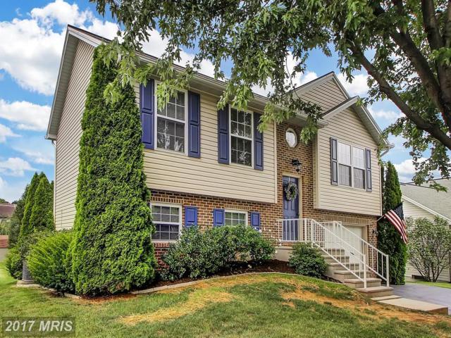 146 Phillips Avenue S, Waynesboro, PA 17268 (#FL10006465) :: Pearson Smith Realty