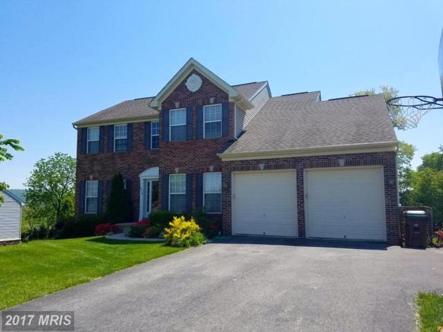 8498 Harper Drive, Waynesboro, PA 17268 (#FL10007198) :: Pearson Smith Realty