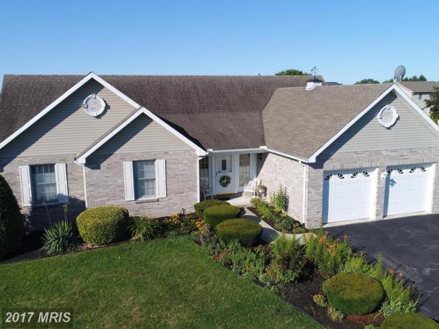 921 Cranberry Drive, Chambersburg, PA 17202 (#FL10015612) :: Pearson Smith Realty