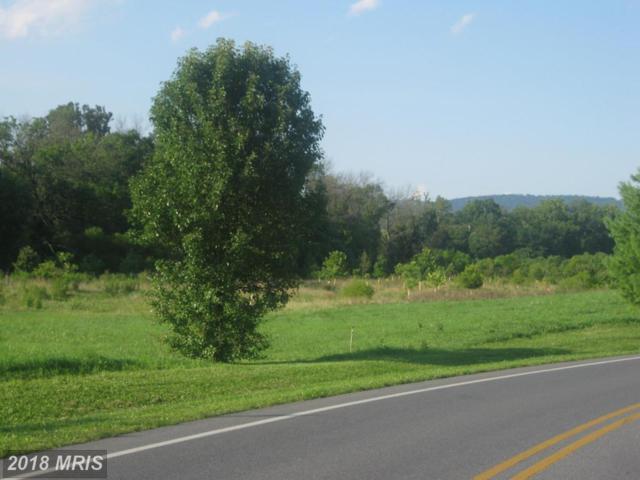 North Welty N, Waynesboro, PA 17268 (#FL10036630) :: RE/MAX Executives
