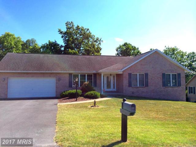 220 Jade Drive, Chambersburg, PA 17202 (#FL10040794) :: LoCoMusings