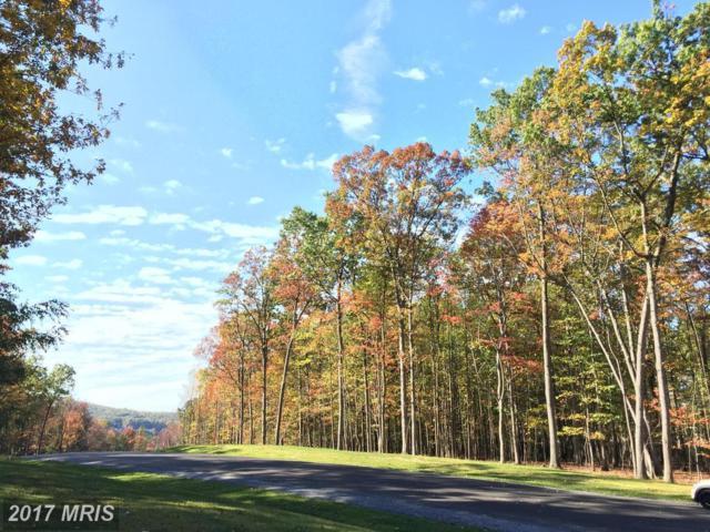 White Oak, Waynesboro, PA 17268 (#FL10062633) :: LoCoMusings