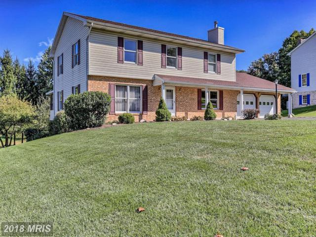 11367 Hearthwood Drive, Waynesboro, PA 17268 (#FL10071314) :: Pearson Smith Realty