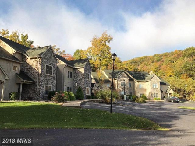 14092 Blairs Ridge Dr #2, Mercersburg, PA 17236 (#FL10089909) :: Pearson Smith Realty