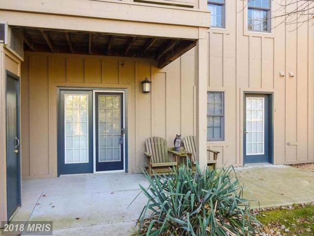 14175 Northern Light Drive #1, Mercersburg, PA 17236 (#FL10114756) :: Pearson Smith Realty
