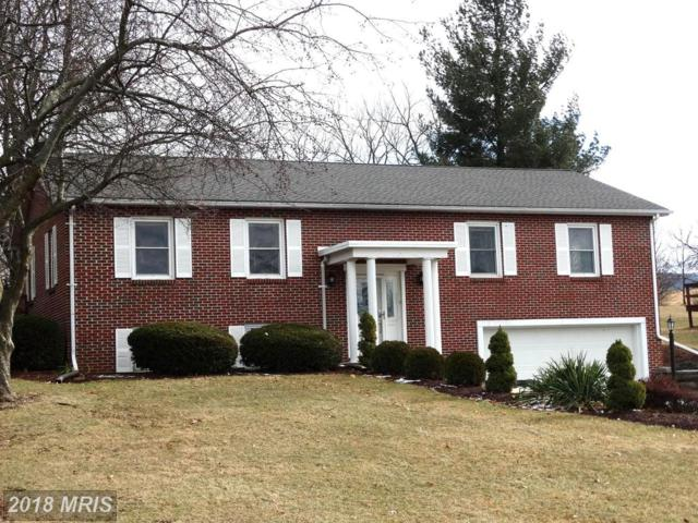 3758 Clubhouse Drive, Fayetteville, PA 17222 (#FL10139492) :: The Gus Anthony Team