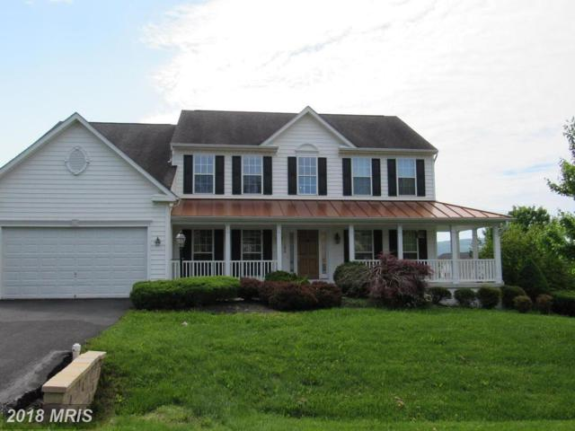 11564 Mystic Rock Lane N, Waynesboro, PA 17268 (#FL10247016) :: The Bob & Ronna Group