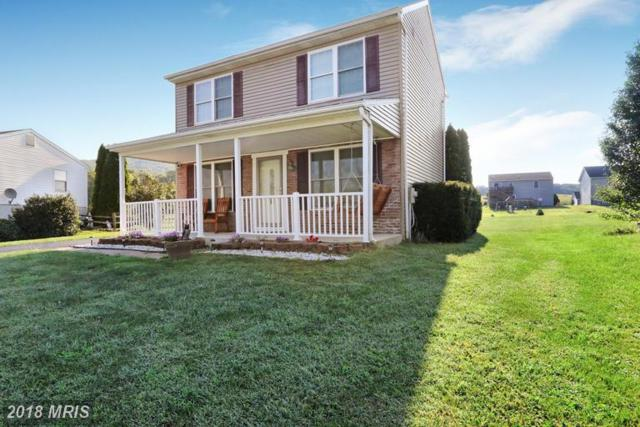 3772 Mountain Shadow Drive, Fayetteville, PA 17222 (#FL10339077) :: Browning Homes Group