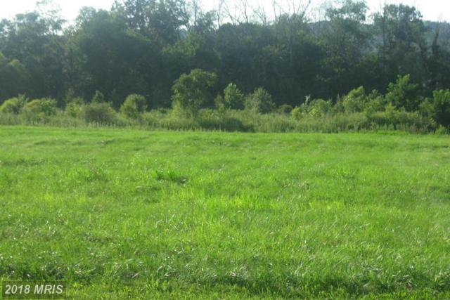 10 Lot 10C North Welty N, Waynesboro, PA 17268 (#FL10350431) :: Keller Williams Pat Hiban Real Estate Group