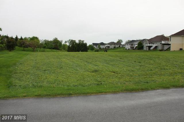 Bent Oak Drive, Fayetteville, PA 17222 (#FL8579359) :: LoCoMusings