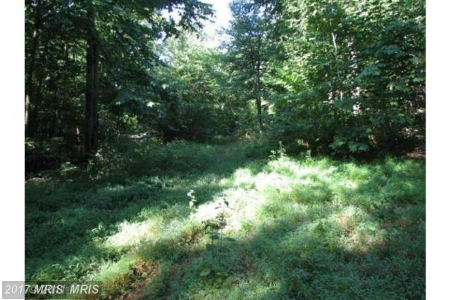Upper Strasburg Road, Upperstrasburg, PA 17265 (#FL8727728) :: Pearson Smith Realty