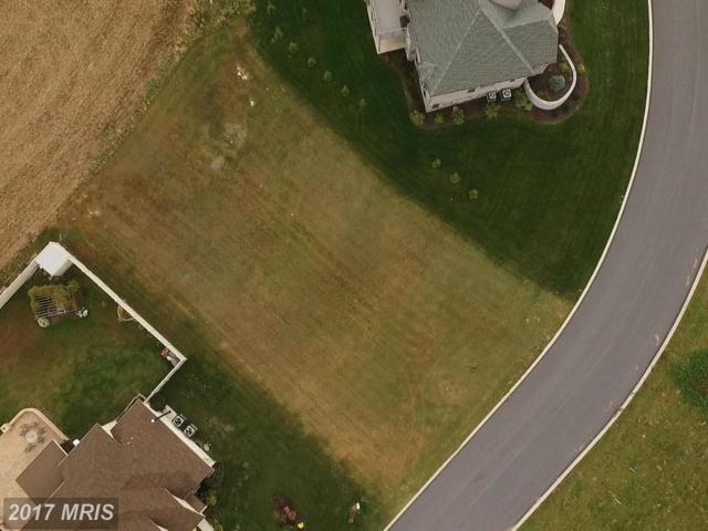 3080 Saint Andrews Drive, Chambersburg, PA 17202 (#FL9855392) :: Pearson Smith Realty