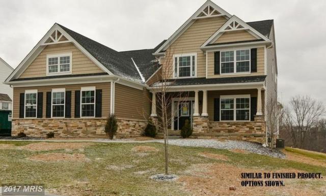 Castleton Drive, Chambersburg, PA 17202 (#FL9861368) :: Pearson Smith Realty