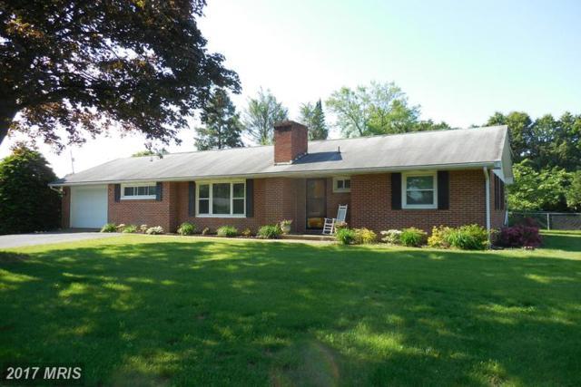 86 Fersfield Road, Chambersburg, PA 17202 (#FL9908473) :: LoCoMusings