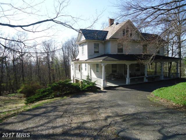 13251 Buena Vista Road, Waynesboro, PA 17268 (#FL9915431) :: Pearson Smith Realty