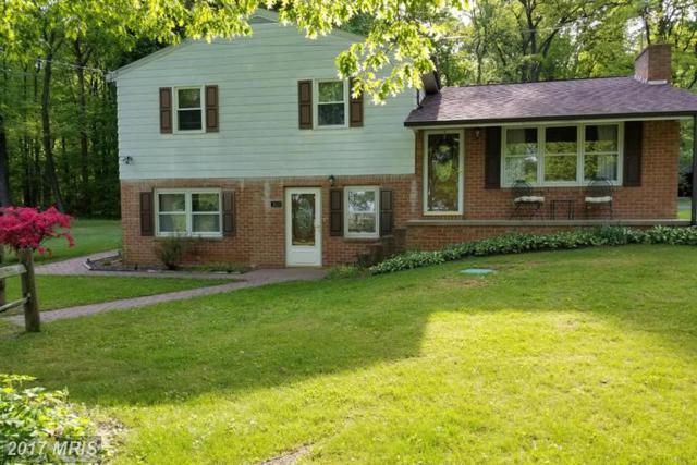 5507 Charlestown Road, Mercersburg, PA 17236 (#FL9932692) :: LoCoMusings