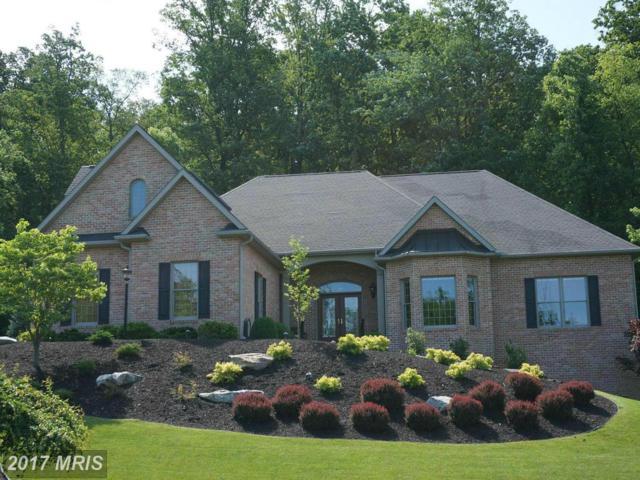 11439 Weatherstone Drive, Waynesboro, PA 17268 (#FL9940119) :: Pearson Smith Realty
