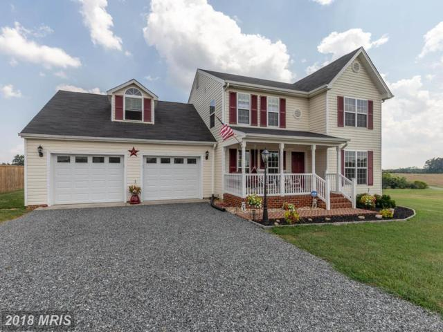 254 Ironhound Drive, Troy, VA 22974 (#FN10306491) :: RE/MAX Cornerstone Realty