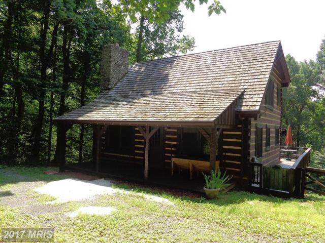 1507 Whiskey Hollow Trail, Linden, VA 22642 (#FQ10009440) :: LoCoMusings