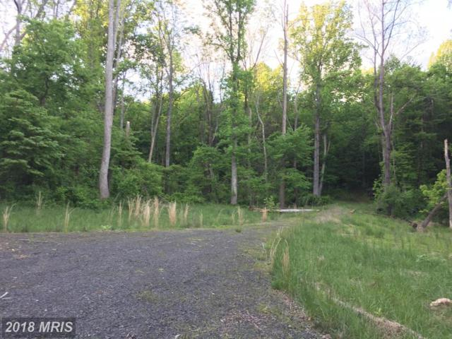 0 Old Bust Head Road, Broad Run, VA 20137 (#FQ10067626) :: Pearson Smith Realty