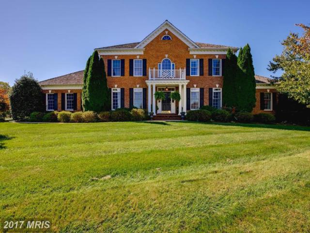 7346 Huntsmans Drive, Warrenton, VA 20186 (#FQ10087148) :: Colgan Real Estate