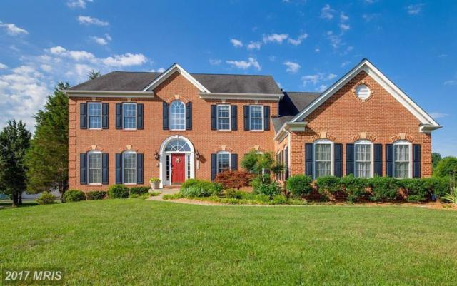 5135 Allison Marshall Drive, Warrenton, VA 20187 (#FQ10087544) :: Colgan Real Estate