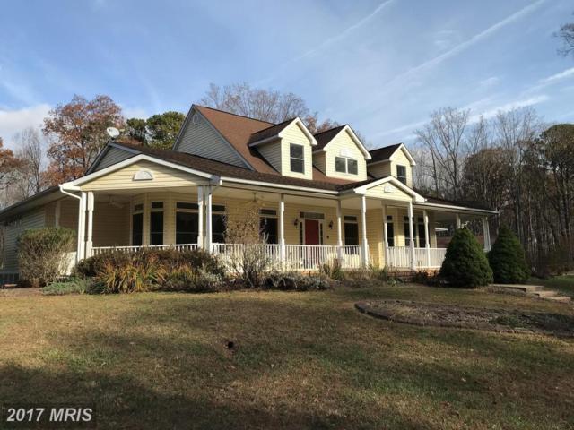 9493 Summer Breeze Road, Warrenton, VA 20186 (#FQ10104514) :: Colgan Real Estate