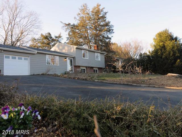 7156 Northampton Street, Warrenton, VA 20187 (#FQ10181896) :: Colgan Real Estate