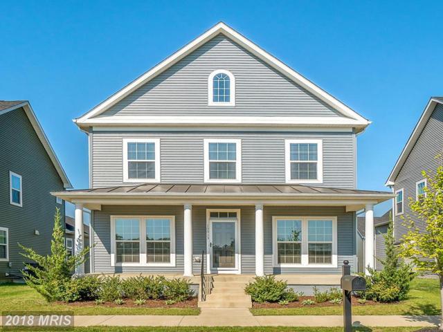10013 Stubenhofer Street, Bealeton, VA 22712 (#FQ10236496) :: The Hagarty Real Estate Team