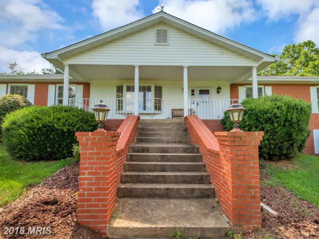 8995 Rogues Road, Warrenton, VA 20187 (MLS #FQ10285047) :: Explore Realty Group