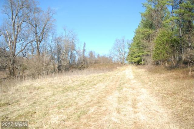 John Marshall Highway, The Plains, VA 20198 (#FQ9868988) :: LoCoMusings