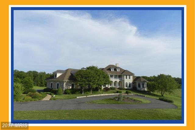 3258 Thompsons Mill Road, Goldvein, VA 22720 (#FQ9899464) :: LoCoMusings
