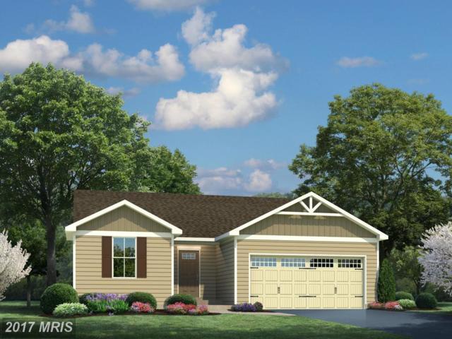 01 Godwins Landing Drive, Remington, VA 22734 (#FQ9902323) :: LoCoMusings