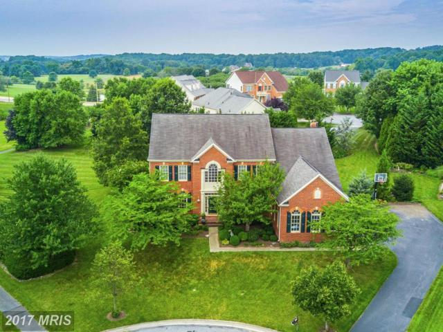 6604 Mackenzie Place, Ijamsville, MD 21754 (#FR10004817) :: Pearson Smith Realty