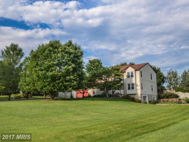 3214 Sunrise Drive, Jefferson, MD 21755 (#FR10005379) :: Pearson Smith Realty