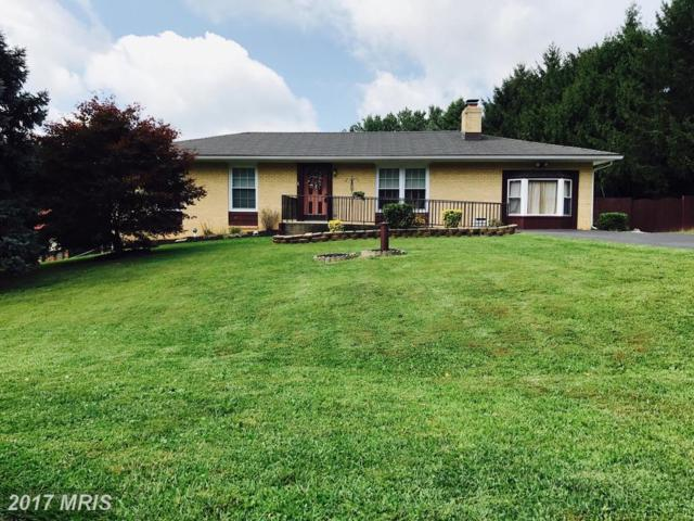 5792 Alfran Drive, Mount Airy, MD 21771 (#FR10009616) :: Pearson Smith Realty