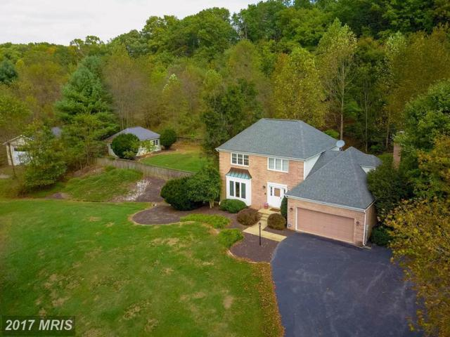7847 Talbot Run Road, Mount Airy, MD 21771 (#FR10048607) :: Ultimate Selling Team