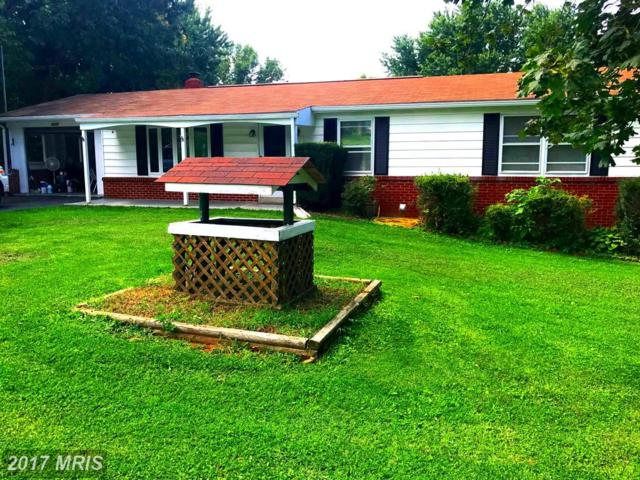 8220 Hollow Road, Middletown, MD 21769 (#FR10054269) :: ReMax Plus