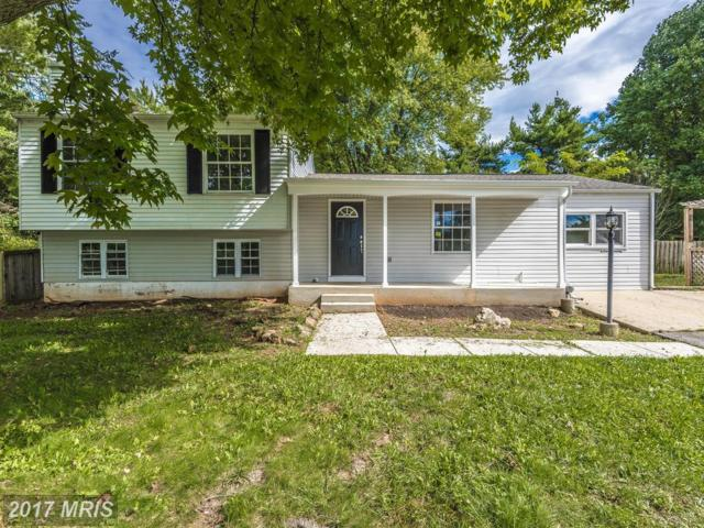 4494 Jade Court, Middletown, MD 21769 (#FR10057886) :: Pearson Smith Realty