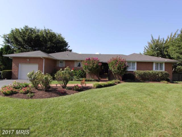 8210 Ridgelea Court, Frederick, MD 21702 (#FR10058228) :: Pearson Smith Realty