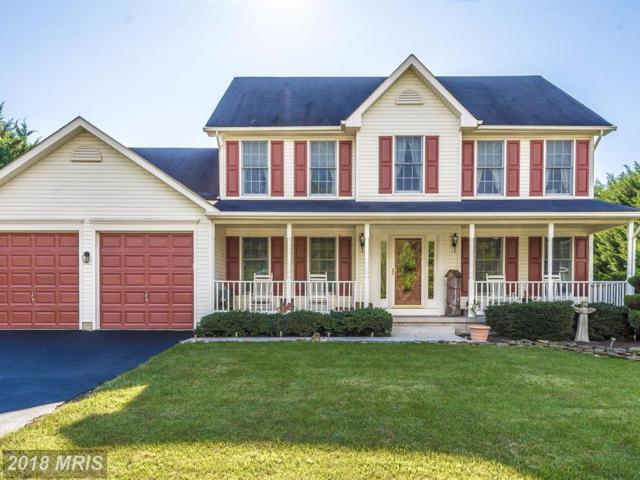 303 Cone Branch Drive, Middletown, MD 21769 (#FR10071119) :: The Bob & Ronna Group