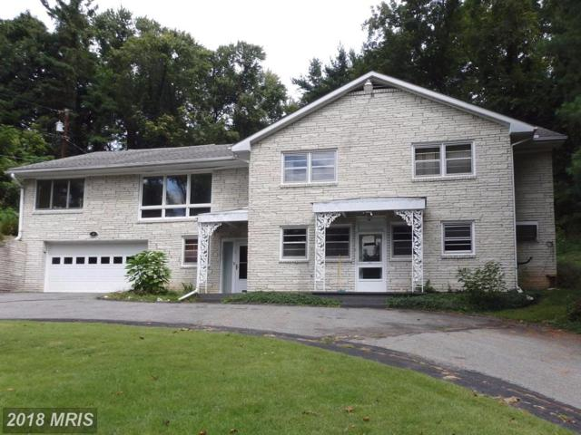 5 Gum Spring Road, Brunswick, MD 21716 (#FR10074315) :: The Gus Anthony Team