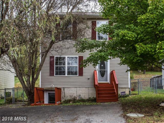 616 Tritapoe Drive, Knoxville, MD 21758 (#FR10084935) :: Pearson Smith Realty