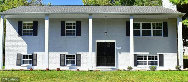 7108 Saddle Road, New Market, MD 21774 (#FR10089079) :: Pearson Smith Realty