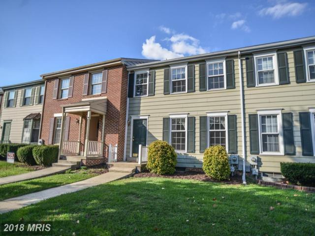 8295 Black Haw Court, Frederick, MD 21701 (#FR10096319) :: Pearson Smith Realty