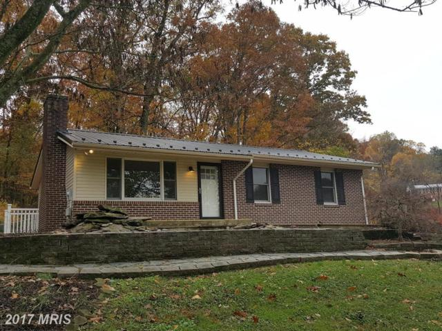 13909 Foggy Bottom Drive, Mount Airy, MD 21771 (#FR10100027) :: The Maryland Group of Long & Foster