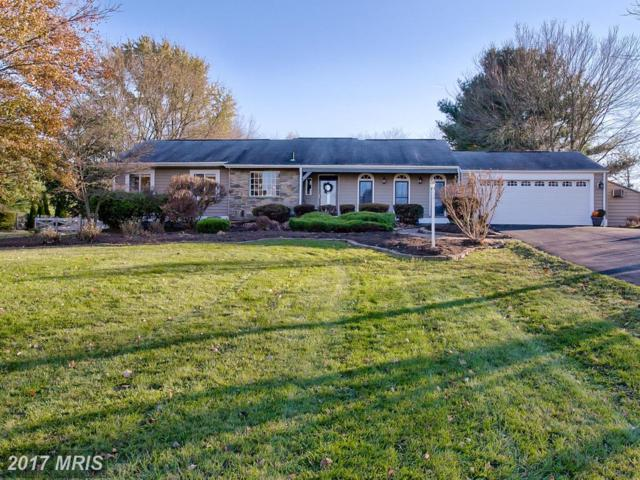 11293 Woodhaven Drive, Ijamsville, MD 21754 (#FR10103621) :: Pearson Smith Realty