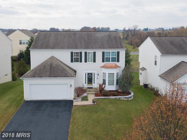 3 Sheridan Lane, Brunswick, MD 21758 (#FR10103757) :: Pearson Smith Realty
