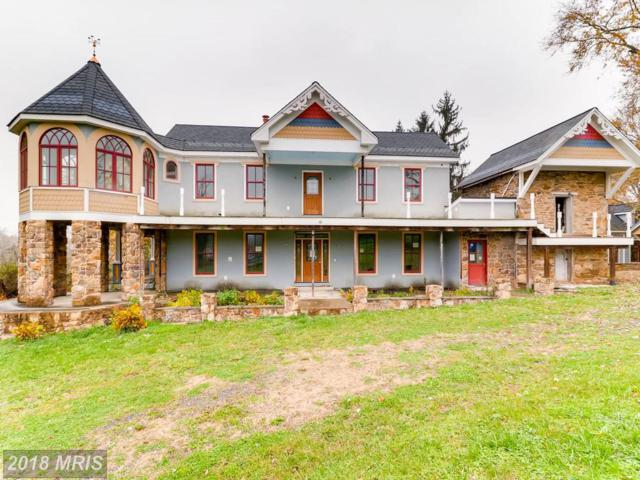 2729 Prices Distillery Road, Clarksburg, MD 20871 (#FR10107412) :: Dart Homes